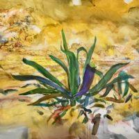 Maguey, 150x150cms. Acrilico sobre lienzo, 2017