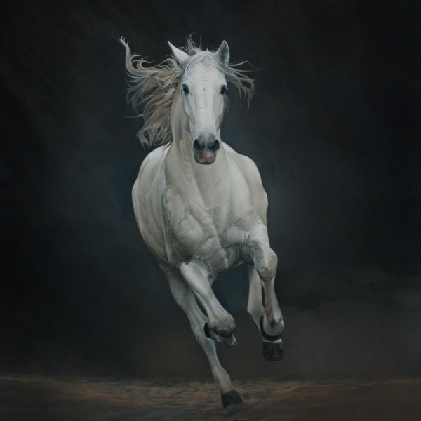 CABALLO BLANCO oleo tabla 120x105 3000