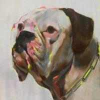Boxer mixta sobre lienzo 150x120 3000