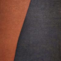 17. Bicromo numero 2 (100 x 120) 3500