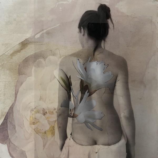 Con magnolias Mixta 30x30 490