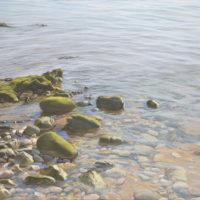 0419 Piedras (81x54 cm) 2250